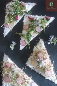 Duo de tartines de chèvre frais, pousses croquantes, radis et fleur de romarin